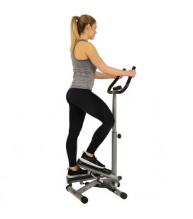 Cardio Twister Stepper